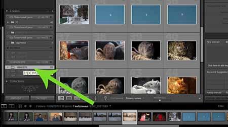 Как выбрать фото в Лайтруме